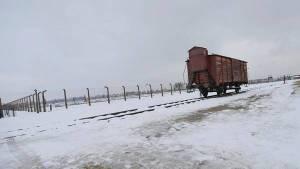 archivo-muestra-concentracion-Auschwitz-Birkenau-REUTER_CLAIMA20150825_0056_28